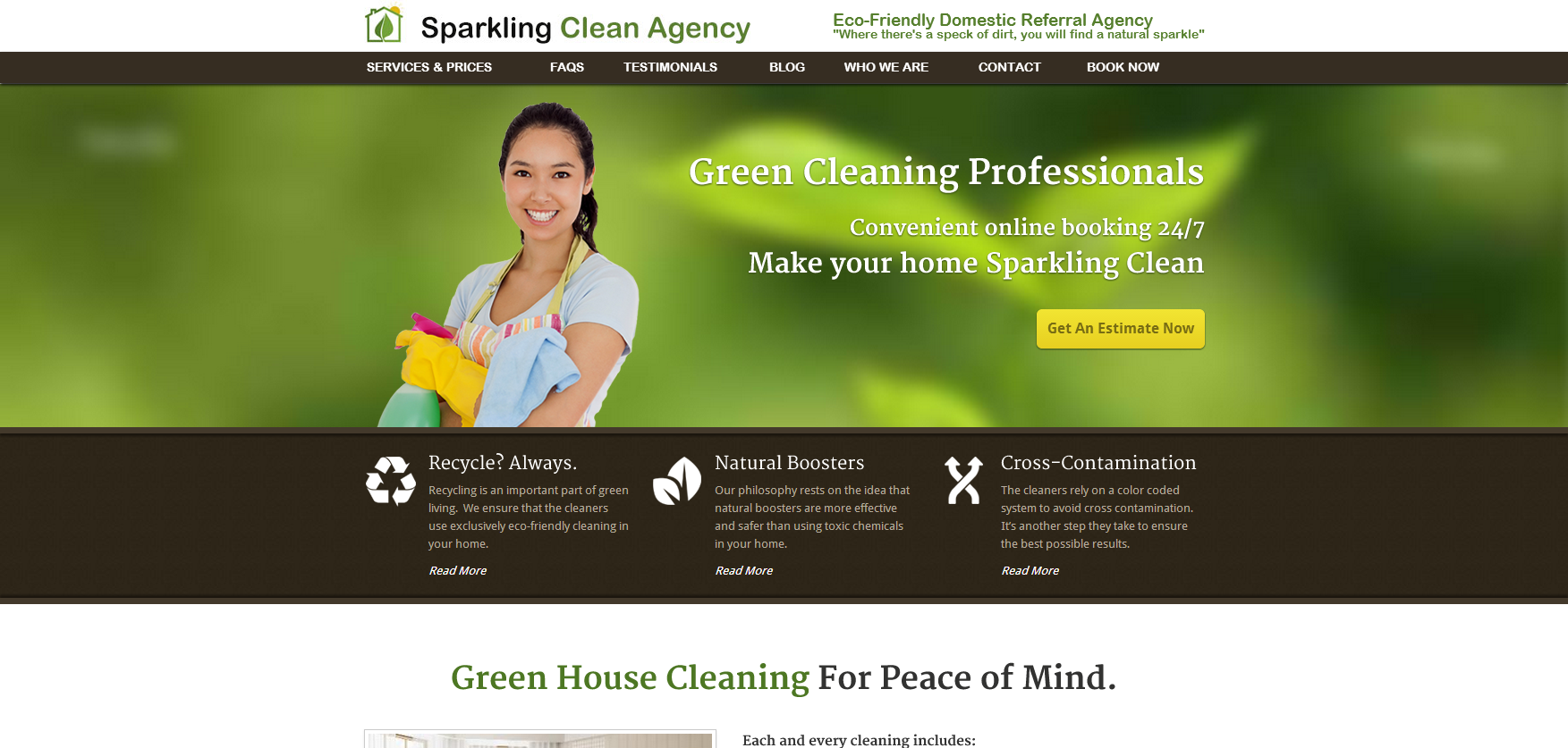 Sparkling Clean Agency | T324 | Website Design and Development ...